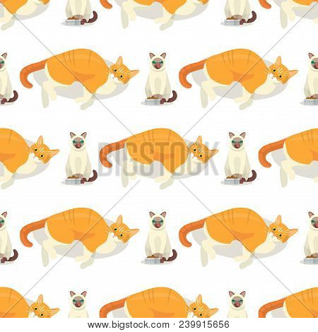 Cat breeds cute kitty pet cartoon cute animal character seamless pattern background illustration. Mammal human friend cat breed animals. Cats paws. Catlike movement and feline manner. poster