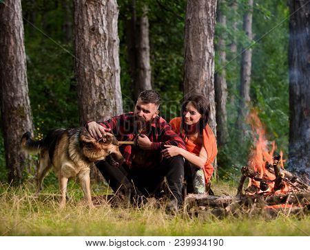 Woman And Handsome Man On Vacation, Hiking, Camping. Couple With German Shepherd Dog Near Bonfire, F