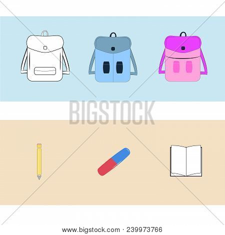 Vector Illustration Of Back To School Supplies. School Supplies Learning Equipment And Different Sch
