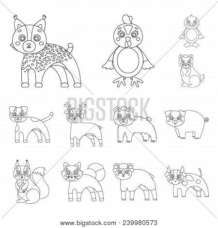 Toy Animals Outline Icons In Set Collection For Design. Bird, Predator And Herbivore Vector Symbol S