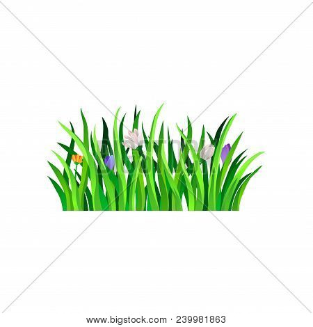 Colorful Hand Drawn Illustration Of Long Bright Green Grass With Beautiful Blooming Spring Flowers.