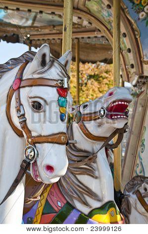 Carousal horses
