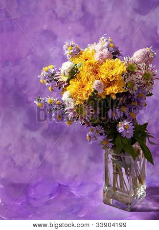 colorful chrysanthemums bunch on abstract background