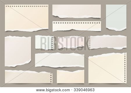 White Ripped Paper Strips Collection. Realistic Paper Scraps With Torn Edges. Sticky Notes, Shreds O