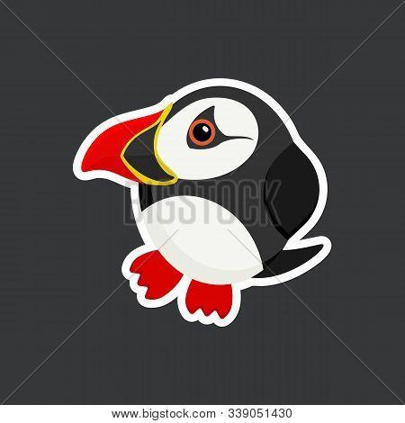 Cute Cartoon Atlantic Puffin Sticker Vector Illustration. Flat Design.