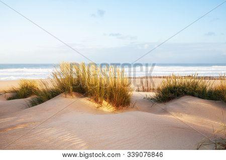 Sand Dunes And Ocean At Sunny Morning, Pensacola, Florida.