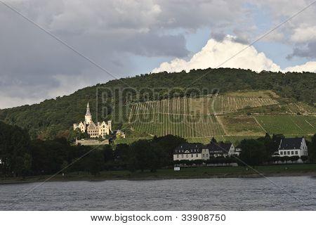 vineyard and castle along river Rhine