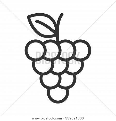Bunch Grapes Outline Vector Photo Free Trial Bigstock