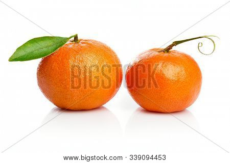 Ripe tangerines with green leaf for design packing. Fruity still life citrus. Isolated on white background.