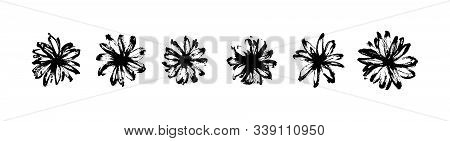 Vector Set Of Hand Drawn Abstract Modern Flowers Painted By Ink. Grunge Style Brush Painting Vector