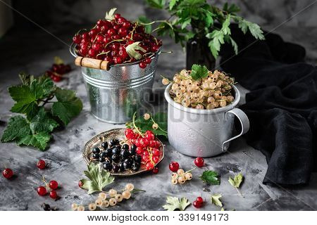 Fresh Currants In A Ceramic Cup: Black Currants, Red Currants And White Currants, Selective Focus
