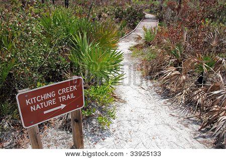 Kitching Creek Trail