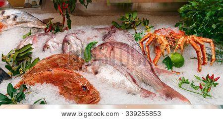Raw fish and shellfish on iced supermarket display