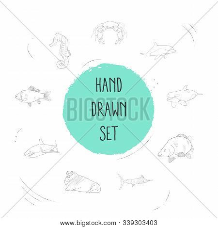 Set Of Seafood Icons Line Style Symbols With Crucian, Atlantic Bottlenose Dolphin, Sea Horse And Oth