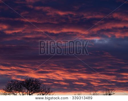 A Vast Sky of Cumulus Clouds Hanging over a Tree at Sunset poster