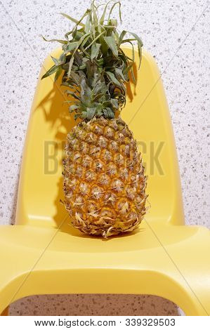 Pineapple Has A Lot Of Fiber, Vitamins C And Minerals.food,fruits Or Healthcare Concept.copy Space.