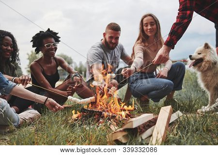 Looking At The Campfire. Group Of People Have Picnic On The Beach. Friends Have Fun At Weekend Time.