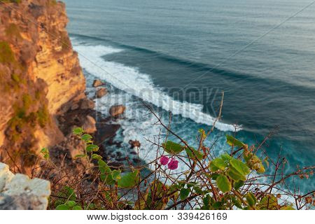 Evening Seascape With Flowers And High Cliffs At Uluwatu Temple, Bali