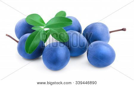 Blackthorn Or Sloe Berries With Leaves Isolated On White Background. Prunus Spinosa