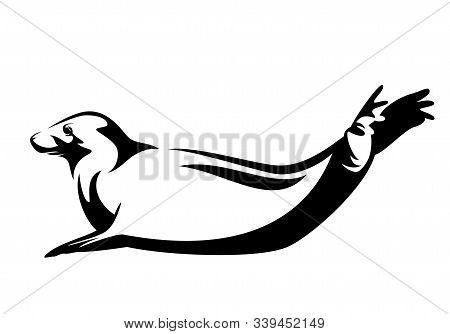 Atlantic Grey Seal Lying With Tail Up - Black And White Sea Mammal Vector Outline Design