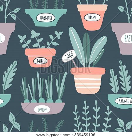 Kitchen Herbs Seamless Pattern. Growing Sage, Rosemary, Mint, Thyme, Arugula, Onion With Labels. Cul