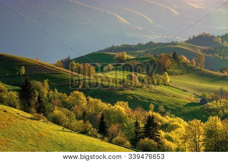 Mountainous Countryside At Sunset. Landscape With Grassy Rural Fields And Trees On Hills Rolling In