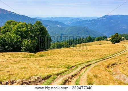 Mountainous Countryside In Summertime. Country Road Down The Hill Through The Grassy Meadow. Trees A