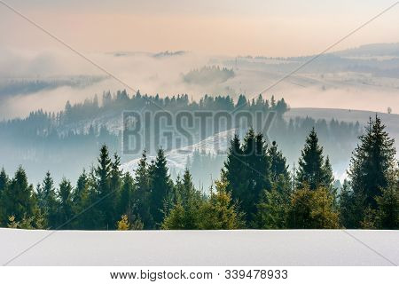 Majestic Countryside At Sunrise In Wintertime. Spruce Trees On Snow Covered Slopes. Clouds And Fog R