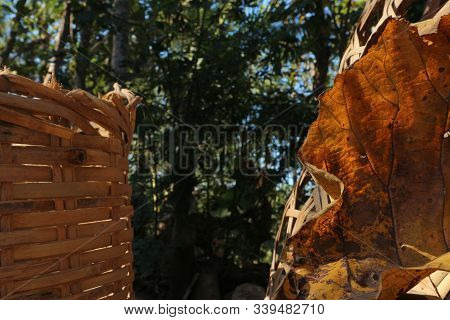 Dried Teak Leaves Next To Bamboo Baskets, The Texture Of The Teak Leaves Is Hollow And There Are Pat
