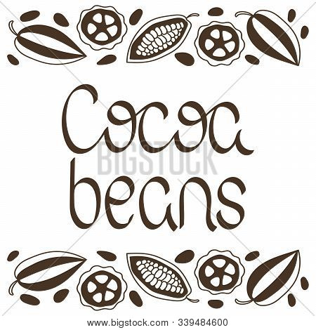 Cocoa Beans. Vector Lettering. Cocoa Pod Fruit And Grains. Illustration On White Background