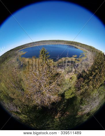Drone View Over Protected Bog Area In Estonia