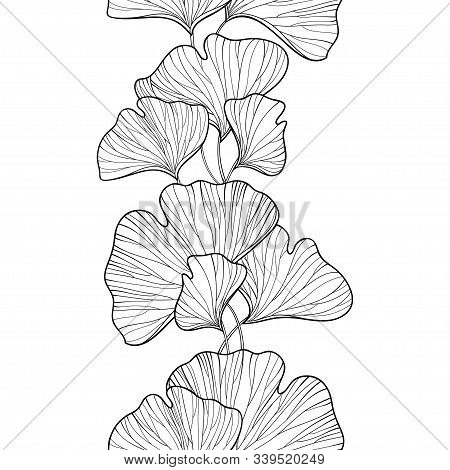 Vector Seamless Pattern With Outline Gingko Or Ginkgo Biloba Leaves In Black On The White Background