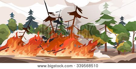 Forest Fire Burning Vector Photo Free Trial Bigstock Burning forest trees in fire disaster. forest fire burning vector photo
