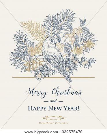 Christmas Card With A Bird And Plants. Hand Drawn Finch, Pine Branch, Juniper And Honeysuckle. Vecto