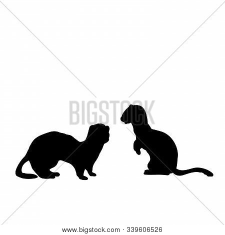 Silhouette Of Two Weasels And A Ferret. An Animal Of The Marten Family. Vector Illustrator