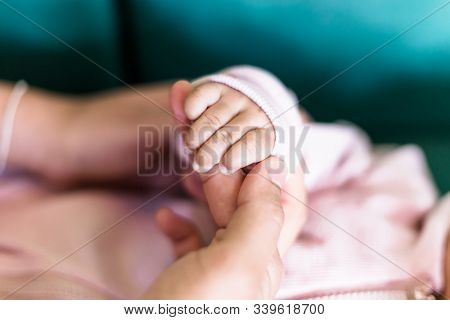 Soft Focus Of Baby Hands And Mom, New Family And Baby Protection Concept, Baby Hand Gently Holding A