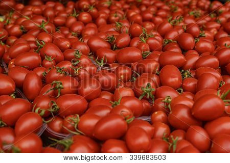 Bright Red Fresh Ripe Juicy Tomatoes On The Counter In The Market, In The Store Or In The Bazaar. Re
