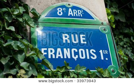 Street plate for Rue du Fran�§ois I in Paris