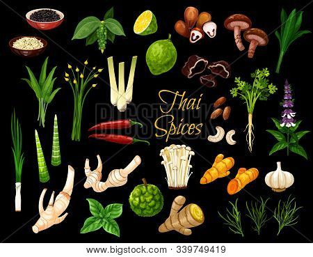 Cooking Spices, Thai Cuisine Herbs And Seasonings. Vector Thailand Spices, Condiments Ans Herbal Fla