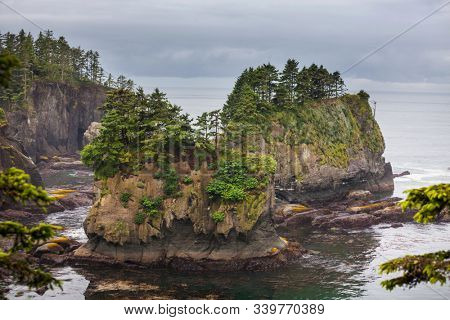 Scenic and rigorous Pacific coast in the Olympic National Park, Washington, USA. Rocks in the ocean and large logs on the beach.