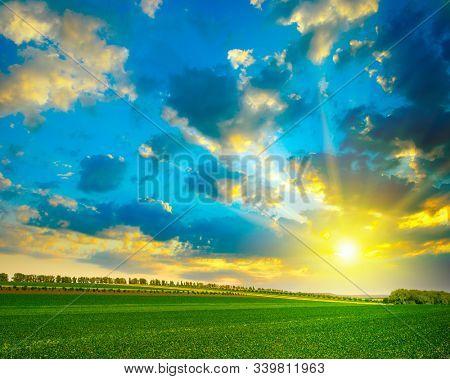 Fantastically beautiful bright sky over green farm field.