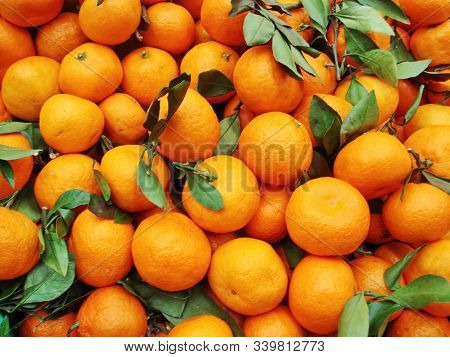 Orange Tangerines. The Smell Of Tangerines-the Smell Of Childhood. New Year Smells Like Tangerines.