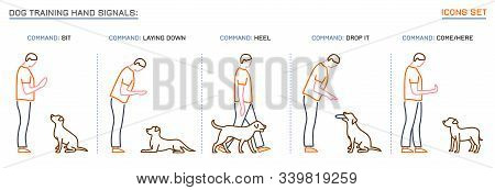 Dog Behavior Icons Set. Professional Trainer. Domestic Animal Or Pet Language. Commands. Training Pr