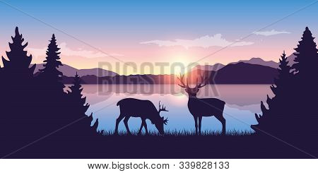 Two Reindeers By The Lake At Sunrise Wildlife Nature Landscape Vector Illustration Eps10