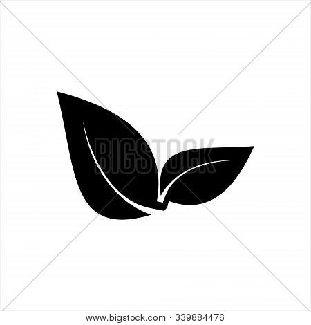Leaf Icon Vector, Leaf Icon, Leaf Icon Eps10, Leaf Icon Eps, Leaf Icon Jpg, Leaf Icon Picture, Leaf
