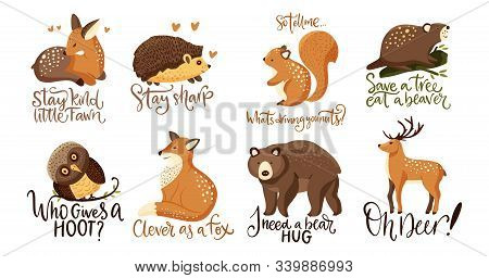 Hand Drawn Forest Animal Vector Set In A Flat Style. Woodland Cartoon Icon Funny Collection With Fun