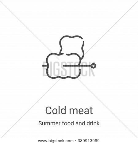 cold meat icon isolated on white background from summer food and drink collection. cold meat icon tr
