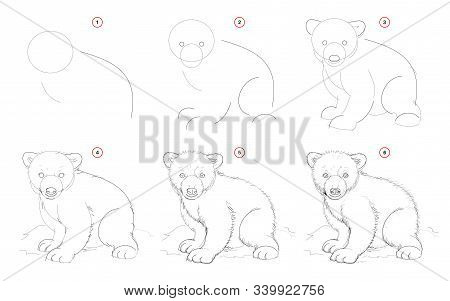 How To Draw From Nature Sketch Of White Teddy Bear. Creation Step By Step Pencil Drawing. Educationa
