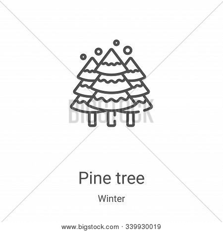 pine tree icon isolated on white background from winter collection. pine tree icon trendy and modern