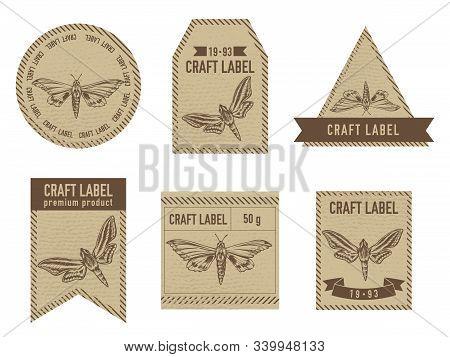 Craft Labels Vintage Design With Illustration Of Ambulyx Pryeri, Theretra Oldenlandiae Stock Illustr